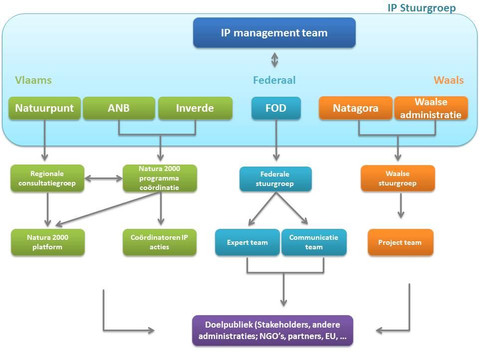 Management structuur 2.0
